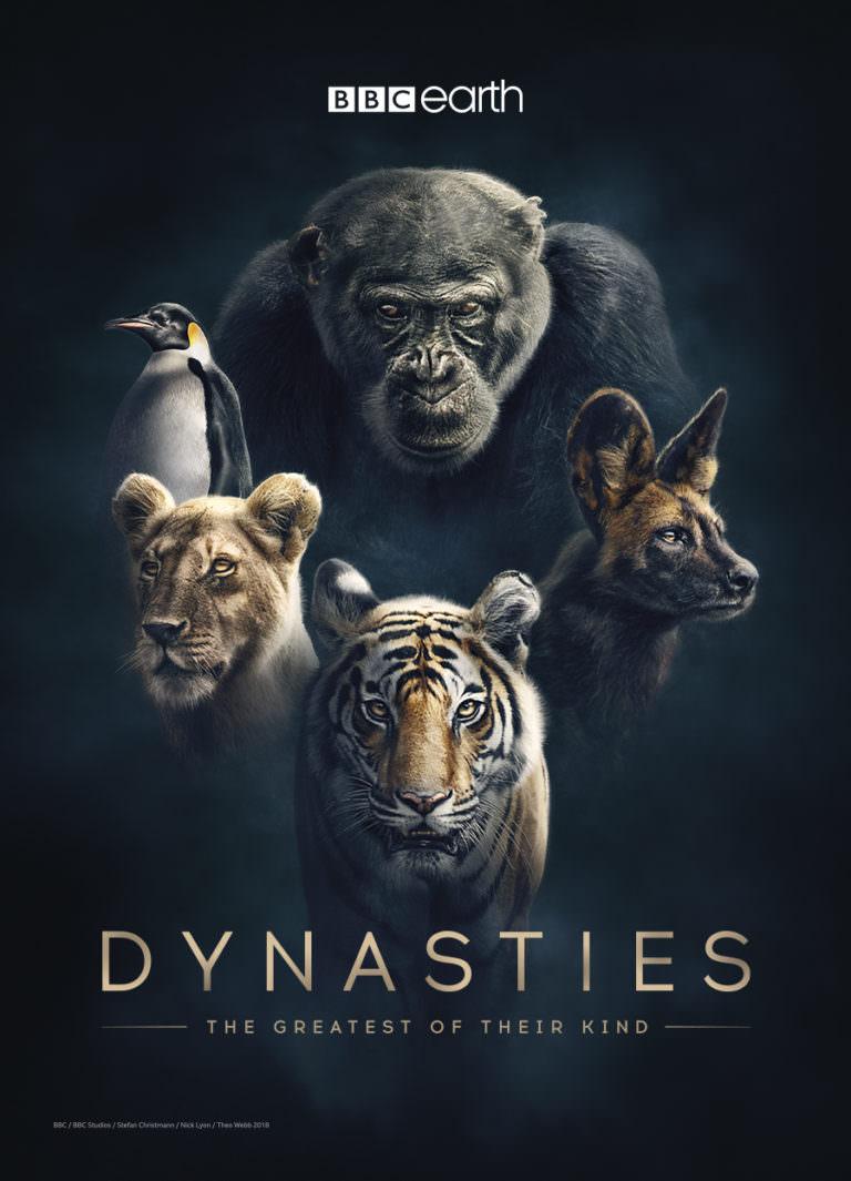 Nesli tükenmek üzere olan 5 hayvan 'Soylar' belgeselinde…