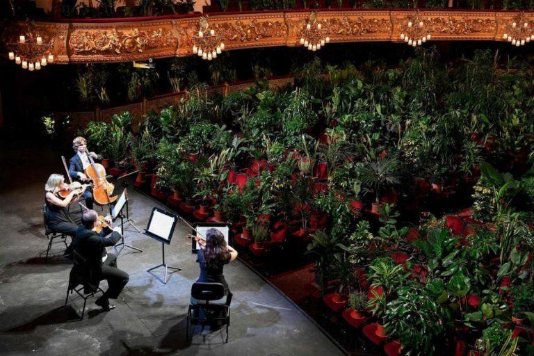 Barselona'da bitkilere özel serenat