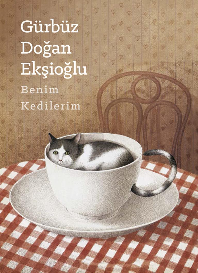 Kedili kitaplara bir yenisi geldi: Benim Kedilerim